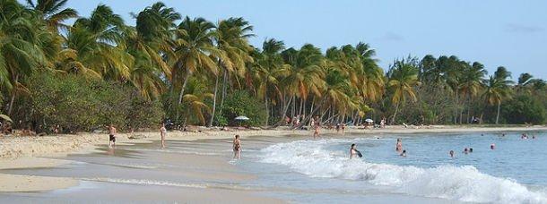 Les Salines en Martinique