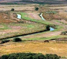 Charente-Maritime: les chemins de la pierre