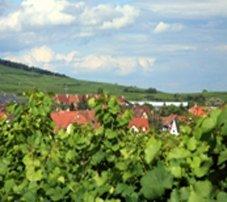 L'Alsace à pied