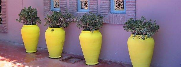 Le jardin Majorelle à Marrakech