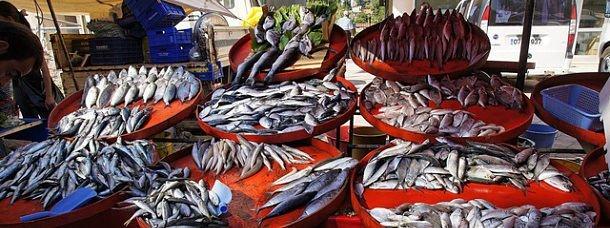 Turquie: du poisson en toute simplicité!
