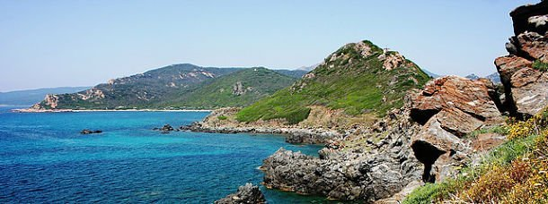 Oursinade en Corse