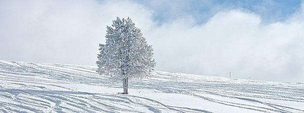 Les stations de ski mythiques