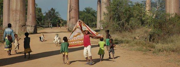 Enfants devant des baobabs à Madagascar
