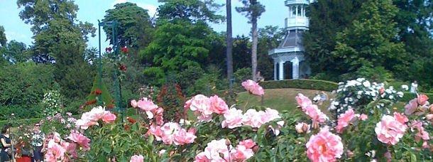 10 destinations fleuries, pour fêter le printemps