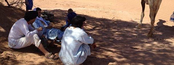 Sous un tamaris, dans le désert marocain