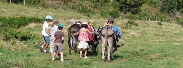 Les enfants adorent les ânes