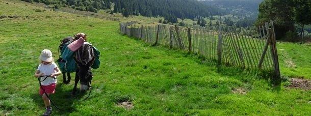 J'ai sillonné l'Auvergne avec mes enfants et 3 ânes