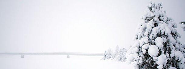 Paysage blanc de neige
