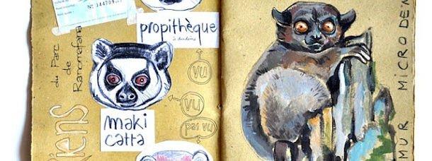 Madagascar ©Stéphanie Ledoux
