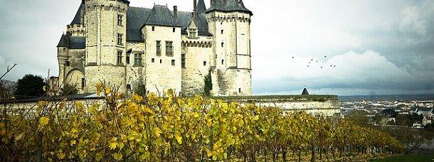 Saumur, ses vignes et son château