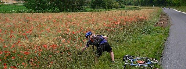 France: ça roule pour le cyclotourisme!