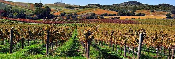 Californie : fiche pratique et carte