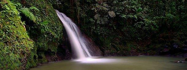 Baigande dans une cascade en Guadeloupe