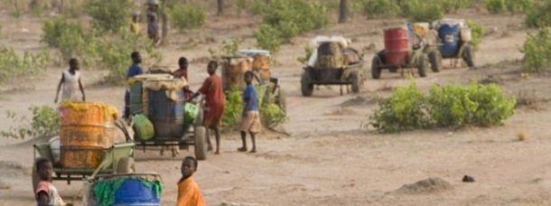 charettes-anes-ghana-afrique