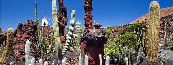 Où séjourner à Lanzarote?