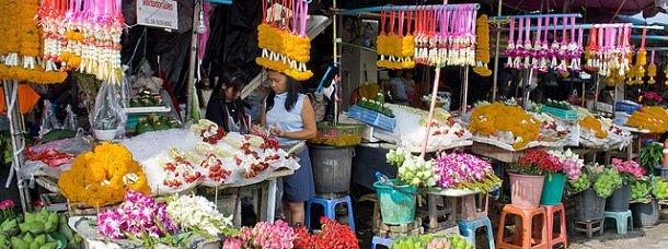 fleurs-thailande