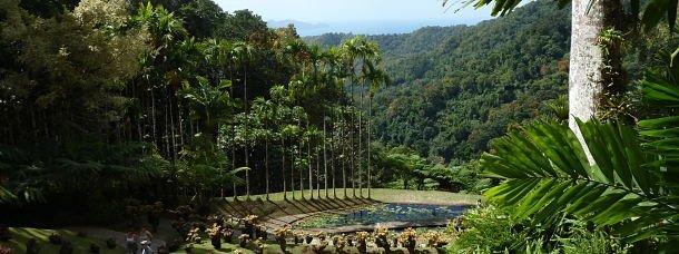 J'ai visité le Jardin de Balata à la Martinique