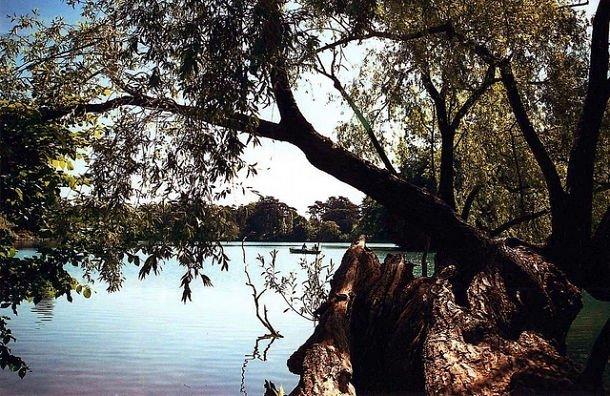 Le lac du Parc de la Tête d'Or  ©Gaëlle Vachet