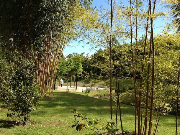 bambouseraie-de-prafrance-cevennes