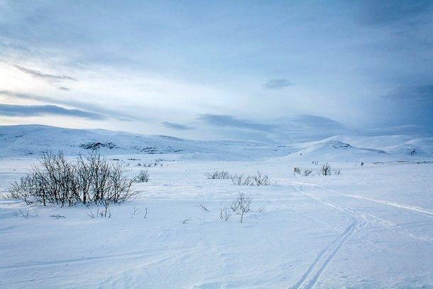 rdm-desertblanc-norvege