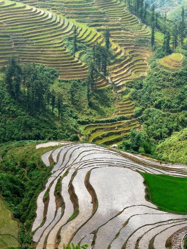 vietnam-paysage-sapa-2