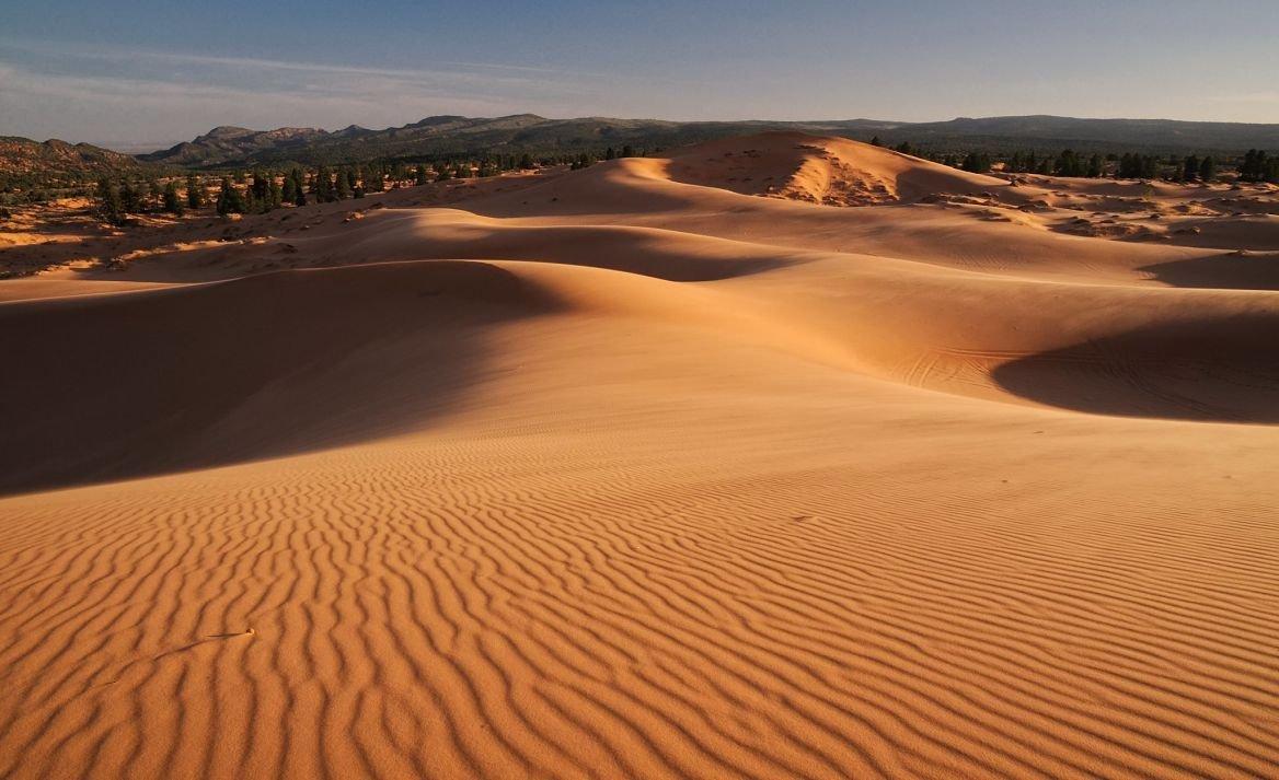 Coral Pink Sand Dunes, Colorado, États-Unis