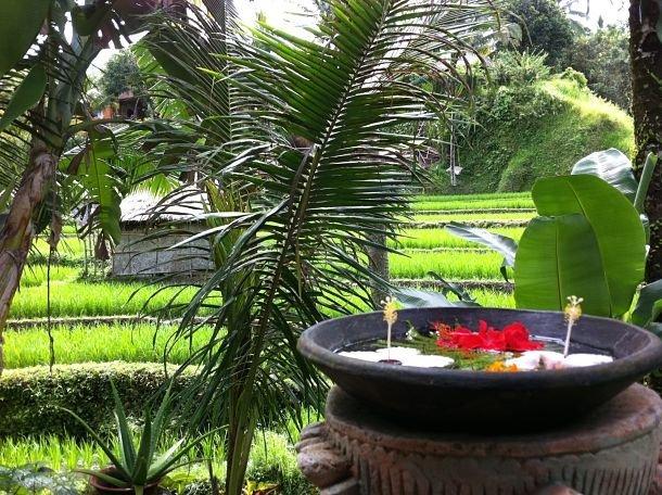 Bali, zen et bien-être ©Julie Wood