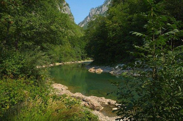 tara-riviere