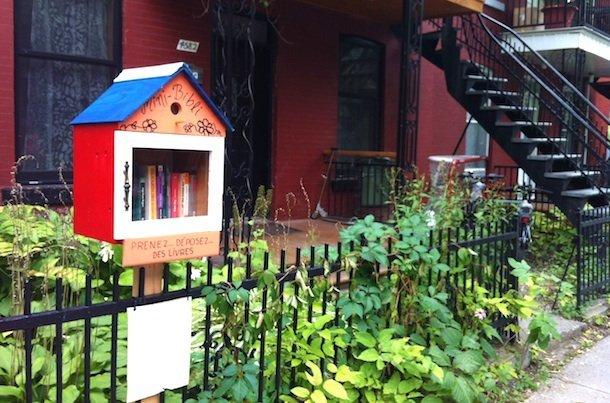 Un carré d'herbe pour les livres. © Elise Rubin