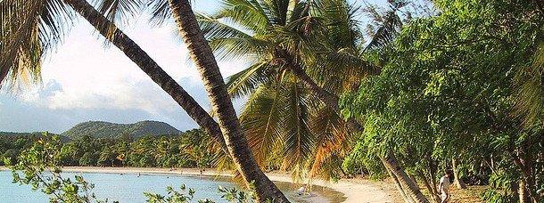 Voyager en Martinique: ce qu'il faut savoir