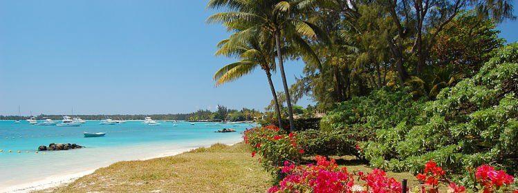 Quels souvenirs rapporter de l'île Maurice?