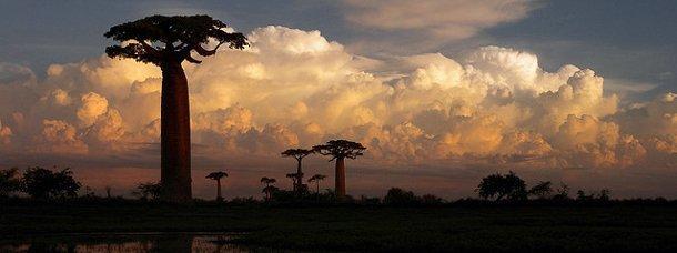 Quelle île choisir dans l'océan Indien ?