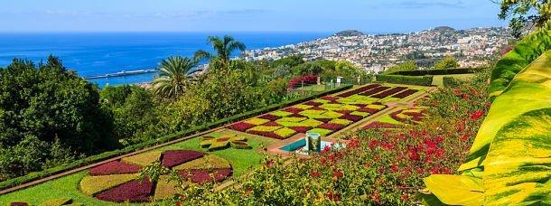 10 parcs et jardins enchanteurs à Madère