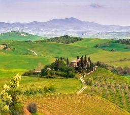 5 destinations où faire de l'agro-tourisme
