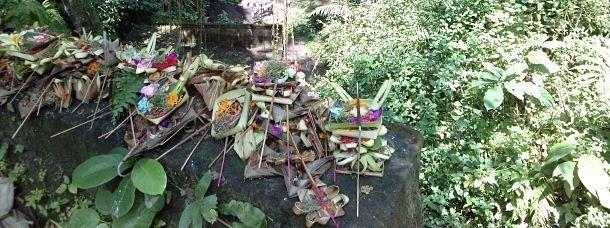 Ma journée de rêve à Ubud, au cœur de Bali
