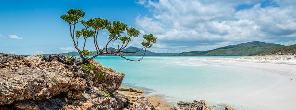 Australie: Whitsunday, archipel de rêve