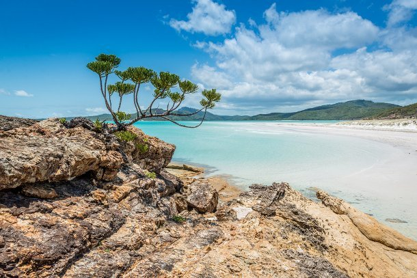 whitehaven-australie