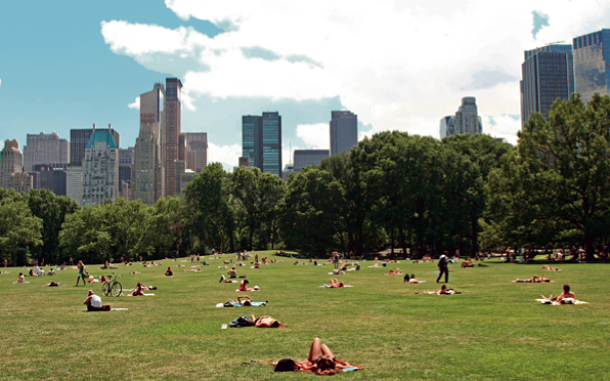 Central Park - ©ExaMedia Photography / Shutterstock