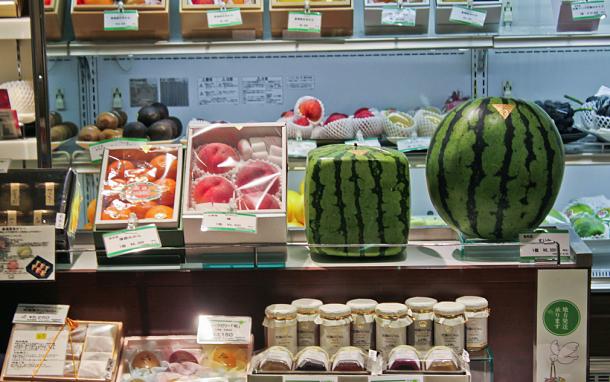 Au Japon, ils font des pastèques carrées - Aala Kanzali / Un Gaijin au Japon