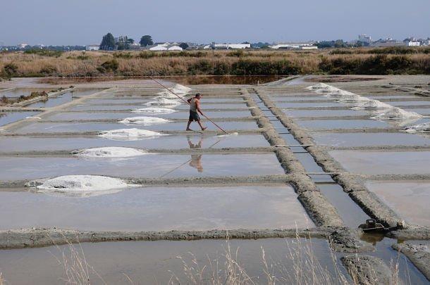 Le sel de Guérande - ©PackShot - Shutterstock