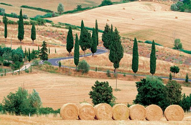 paysages de Toscane ©Marco Mistretta - Shutterstock