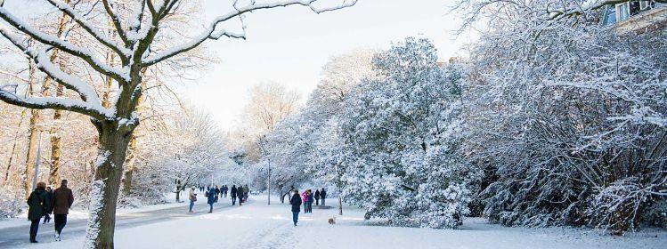 Que faire en hiver à Amsterdam?