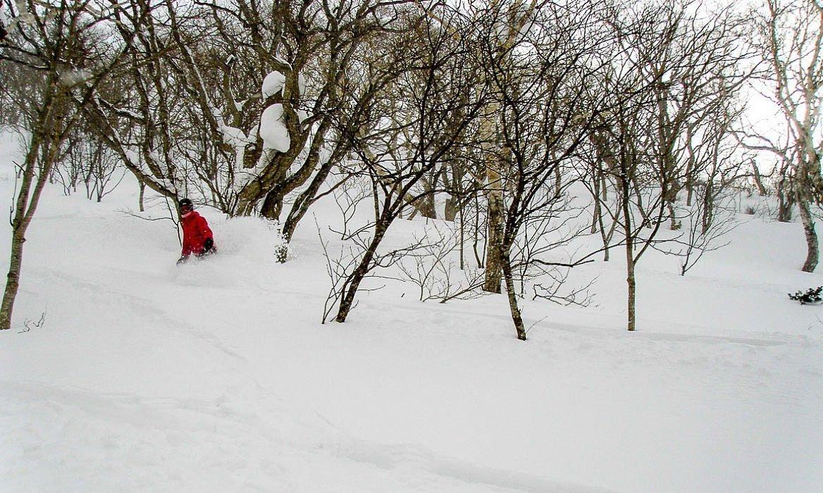 japon ski