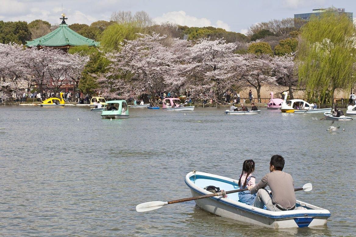 Le parc d'Ueno ©MAISANT Ludovic / hemis.fr