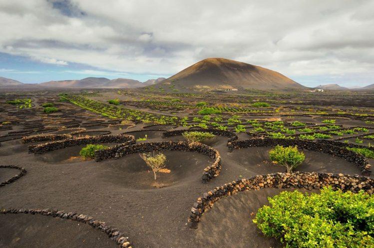 La vallée de la Geria, Lanzarote, îles Canaries