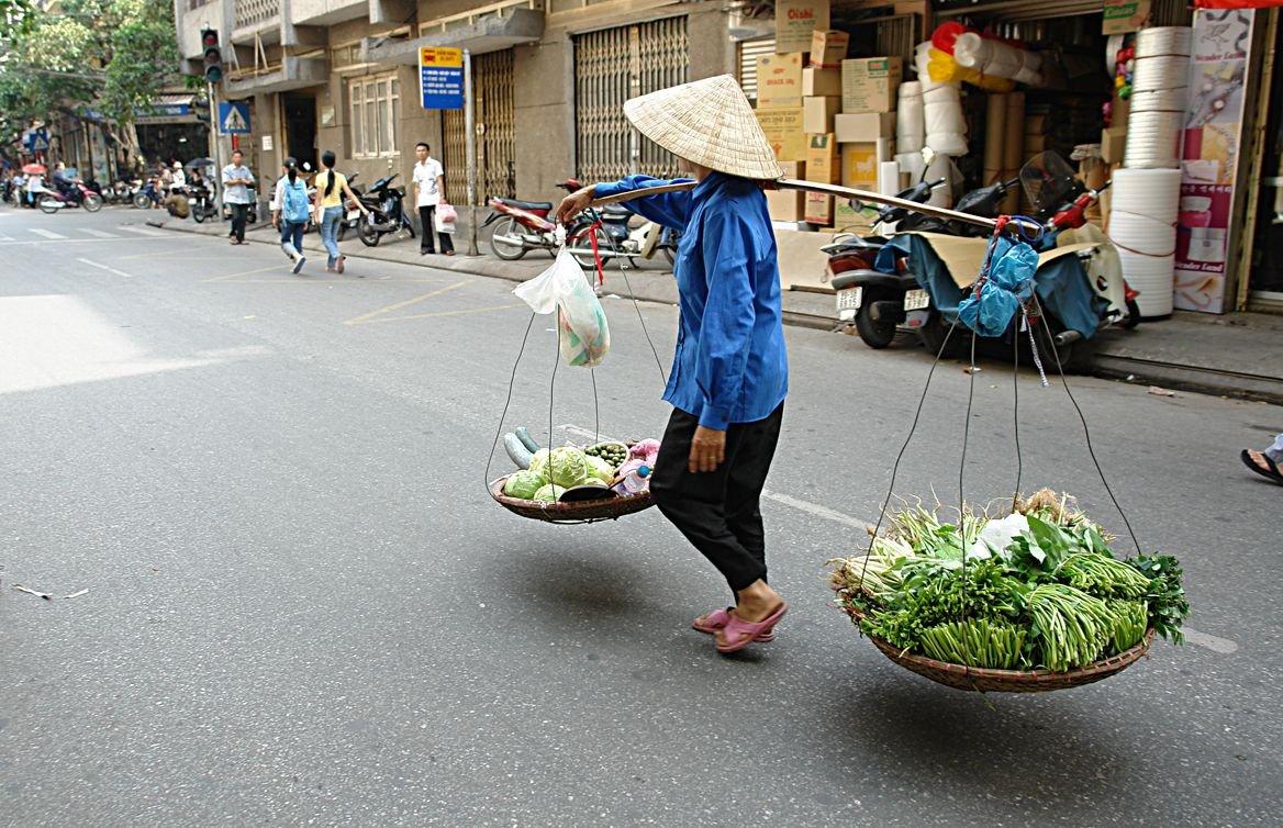 vietnam rue