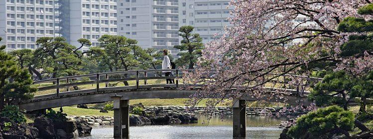 Quoi de neuf dans le guide Évasion Japon ?