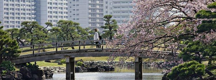 Japon : dans quelle région séjourner ?