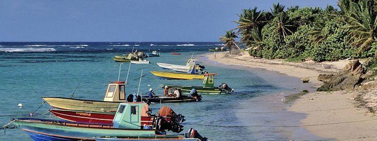Guadeloupe: nos propositions de circuits
